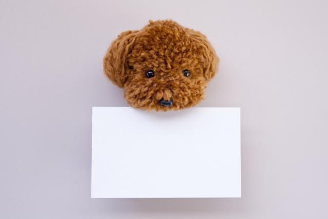 犬がメッセージカードをくわえている